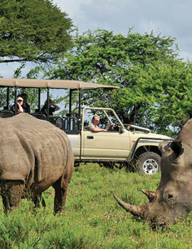Magnificent Hluhluwe – Imfolozi Game Reserve